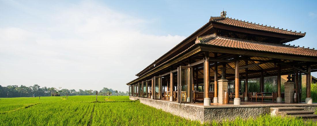 ザ・チェディクラブ  ザ・レストラン(西洋&インドネシア料理)