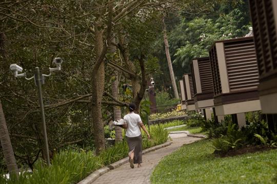 ザ・サマヤ ウブド ホテル内敷地